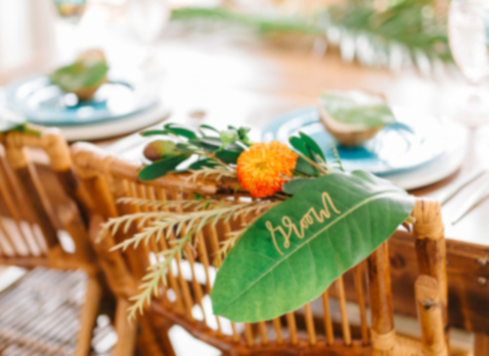 alquiler de sillas de bambú euskadi