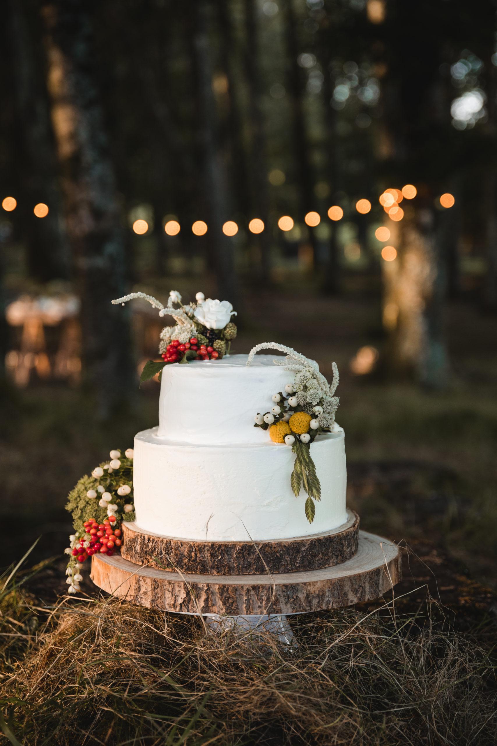 Tarta nupcial de una boda en la montaña